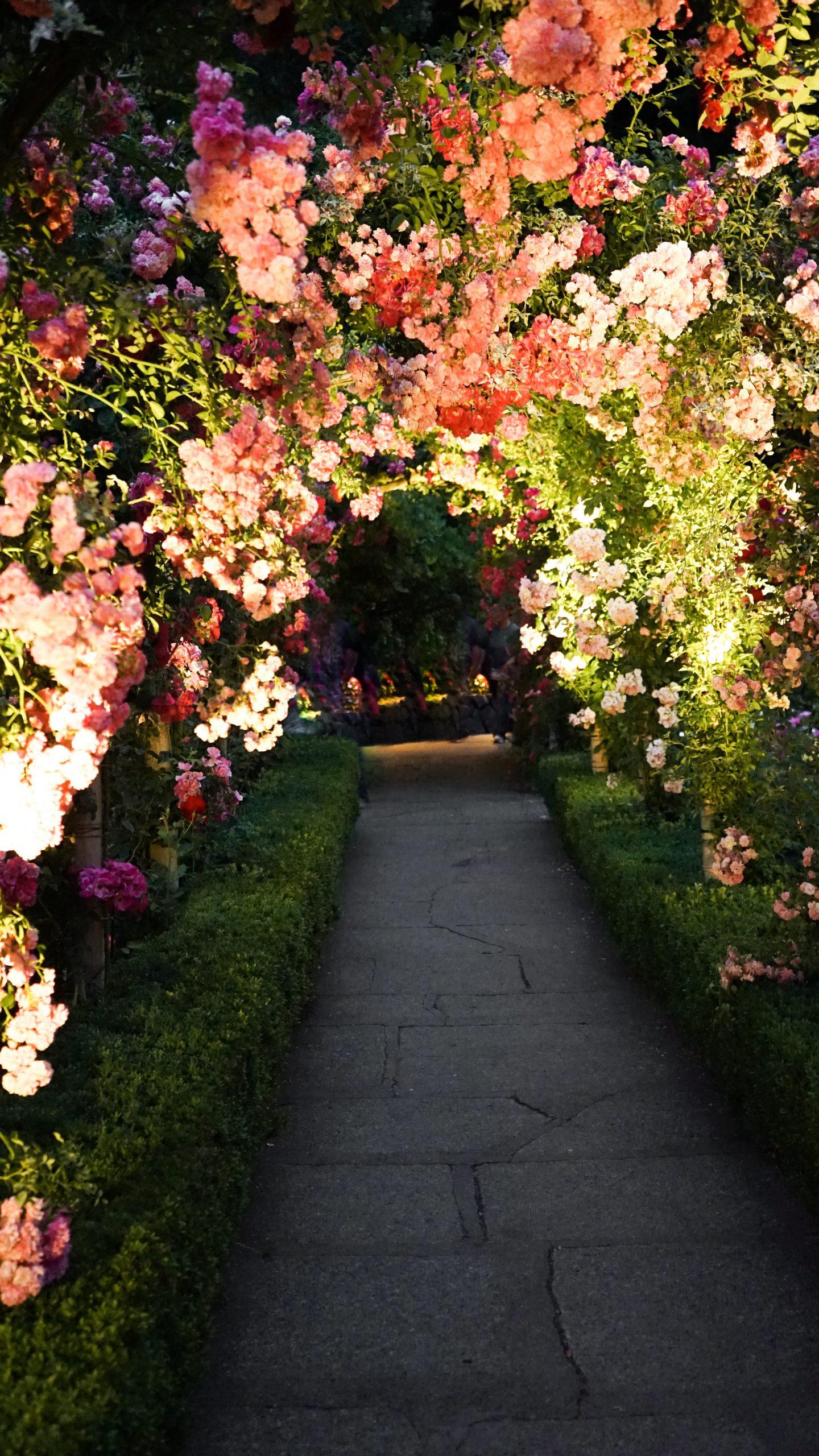 Tips voor een mooiere tuin