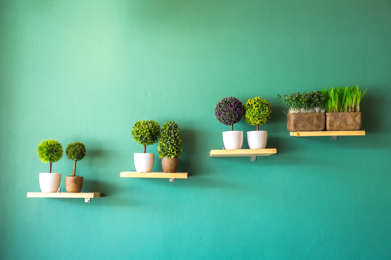 De voordelen van Maxifleur kunstplanten