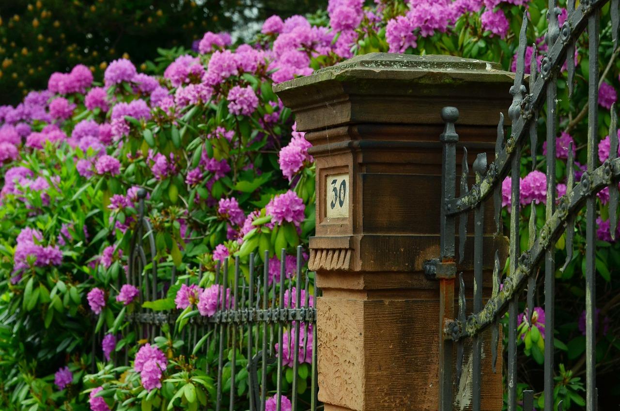 Inrichten van een kleine tuin
